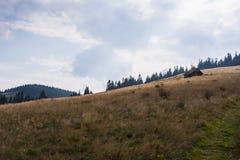 Mountain Rycerzowa, Poland. Polish mountains, Beskid Bialski, panorama, landscape Royalty Free Stock Photo