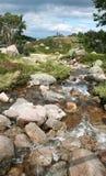 Mountain's brook Royalty Free Stock Image