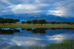 Mountain's lagoon. Lagoon at the foot of the Sierra de Gredos, with the characteristic oak forest stock photos