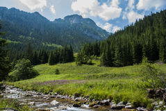 Mountain's landscape with river Royalty Free Stock Photography
