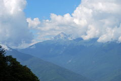 Mountain's landscape in Sochi Royalty Free Stock Photography