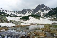 Mountain's life. Alpine view from Pietrele Lake area, Retezat National Park Stock Photo