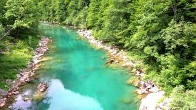 Mountain`s river canyon stock video