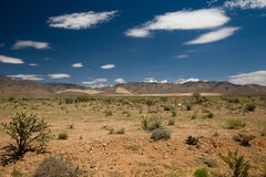 Mountain Scape in the Mojave Desert Royalty Free Stock Photo