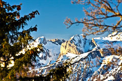Mountain scene 2. Winter view of typical swiss mountains Royalty Free Stock Photo