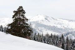 Mountain scene in winter time Royalty Free Stock Image