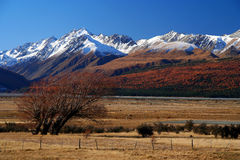 Mountain Scenery. Beautiful mountain scenery on road to Mt Cook New Zealand stock image