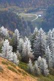 Mountain scenery. Late autumn mountain scenery in Cozia National Park, Romania stock photography