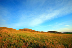 Mountain Scenery. The yellow grass field on the mountain, blue sky and white clouds, form a beautiful autumn scenery. This picture is taken on an autumn evening stock photos