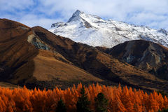Mountain Scenery. Beautiful mountain scenery on road to Mt Cook New Zealand stock images