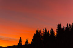 Mountain scenery in the Alps, with colorful sunrise and fir trees Royalty Free Stock Image