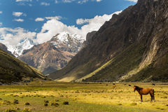 Mountain scenery in the Andes Stock Photo