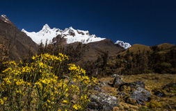 Mountain scenery in the Andes Royalty Free Stock Photos