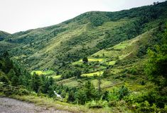 Mountain scenery in Bhutan. Mountain scenery at summer in Bhutan. Bhutan economy is based on agriculture, forestry, tourism and the sale of hydroelectric power Stock Photo