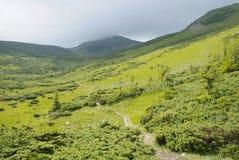 Mountain scenery in Carpathians Royalty Free Stock Photos
