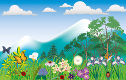 Mountain scenery with flowers illustration Stock Images