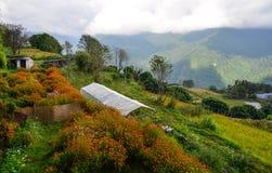 Mountain village in Ghandruk, Nepal royalty free stock photo