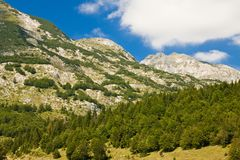 Mountain scenery, National park Durmitor Royalty Free Stock Photography