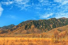 Mountain scenery with pine tree forest in autumn season, Nikko,. Japan Royalty Free Stock Images