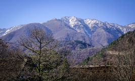 Mountain scenery in Gifu, Japan. Mountain scenery with pine tree forest and snow mountains in Gifu, Japan Stock Photo