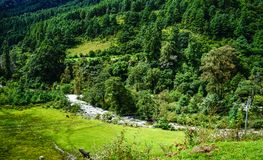 Mountain scenery in Bhutan. Mountain scenery with a stream and green valley in Bhutan Stock Images