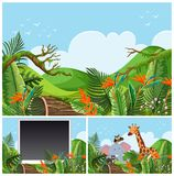 Mountain scenes with wild animals. Illustration stock illustration