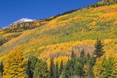 Mountain Scenic in Autumn Stock Photography
