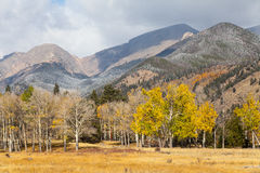 Mountain Scenic in Fall Royalty Free Stock Photography