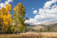 Mountain Scenic Landscape in Fall Stock Photo