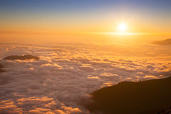 Mountain sea of clouds. In sunset light stock images