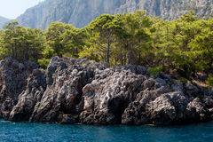 Mountain and sea. Wooded mountain and sea in Asia Minor royalty free stock image