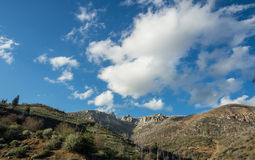 Mountain of sequoia national forest Royalty Free Stock Photography