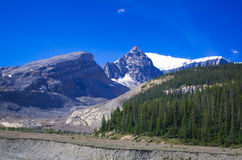 Mountain series, snow mountain, glacier and blue sky aside the parkway towards Jasper national park Stock Images