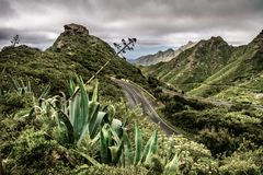 Mountain serpentine. The road is mountainous. The way from Anaga Royalty Free Stock Photo