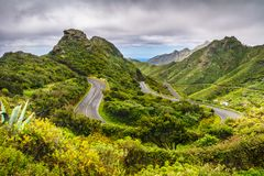 Mountain serpentine. The road is mountainous. The way from Anaga Stock Images