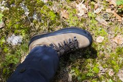 Mountain shoe. S on a commercial photo Royalty Free Stock Photo