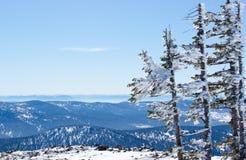 Mountain Shoria Royalty Free Stock Photo