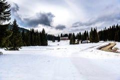Mountain ski resort Pokljuka Slovenia - nature and sport Stock Image