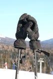 Mountain-skier gloves. Royalty Free Stock Image
