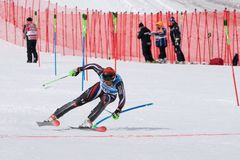 Mountain skier skiing down on finish line. Russian Alpine Skiing Cup, slalom. MOROZNAYA, KAMCHATKA PENINSULA, RUSSIA - MAR 28, 2019: Mount skier Sergey Maytakov stock images