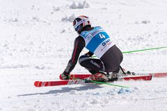 Mountain skier skiing down mount slope. Russian Alpine Skiing Cup, giant slalom. KAMCHATKA PENINSULA, RUSSIA - APRIL 1, 2019: Mountain skier Maytakov Sergey ( stock photo
