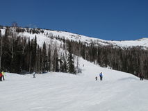 Mountain skiing. Skiing in the mountains. Russia. Mountain Shoria Royalty Free Stock Image