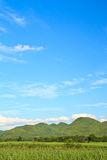 Mountain and sky. Green meadow in mountain. Composition of nature stock images