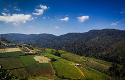Mountain with the sky at Phu Thap Boek in Phetchabun. Stock Images