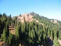 Mountain, sky, trees Royalty Free Stock Photography