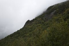 Mountain slope in foggy weather Stock Image