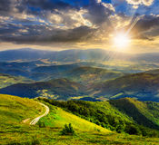 Mountain slope with forest in summer at sunset Royalty Free Stock Photos
