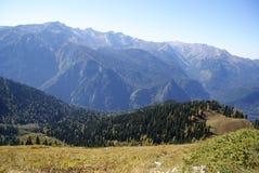 Mountain slope, forested, Abkhazia Royalty Free Stock Image