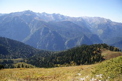 Mountain slope, forested, Abkhazia Royalty Free Stock Photo