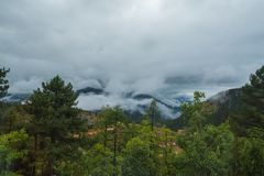 Mountain slope in lying cloud with the evergreen conifers shrouded in mist in a scenic landscape view Stock Photo